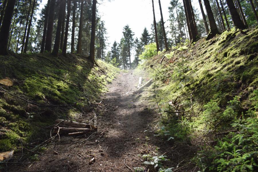 Billede af Duedal Bjerg