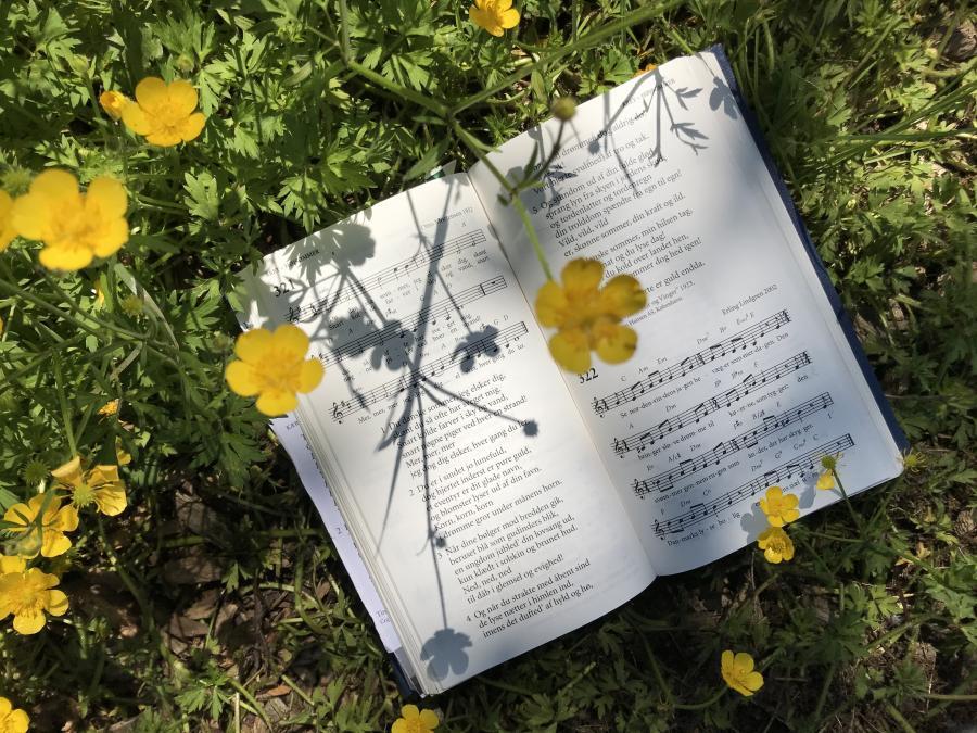 sangbog i blomssterflor