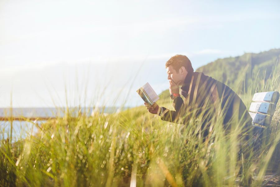 Mand læser en bog på en mark